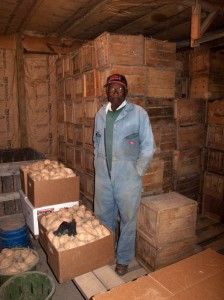 William Harmon with his harvested sweet potatoes. Franktown, Virginia 2010